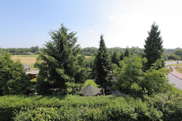 Rheinauen Landschaft